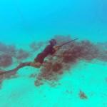 pêche au fusil marin